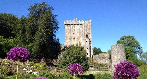 Pic Blarney