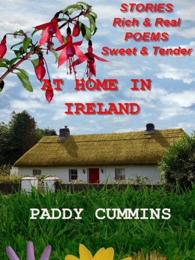 At Home in Ireland Cover