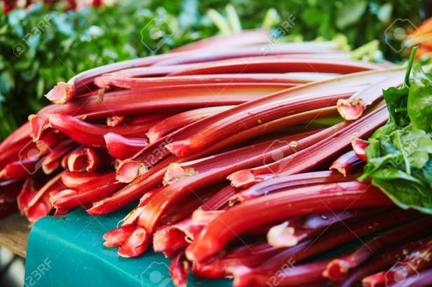 Rhubarb on farmer market in Paris, France