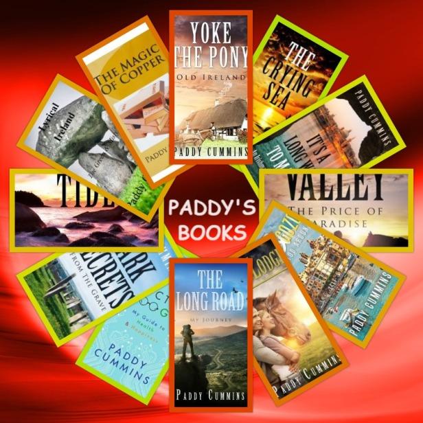paddy's books 2